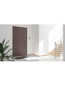 Дверь DoorHan Eco